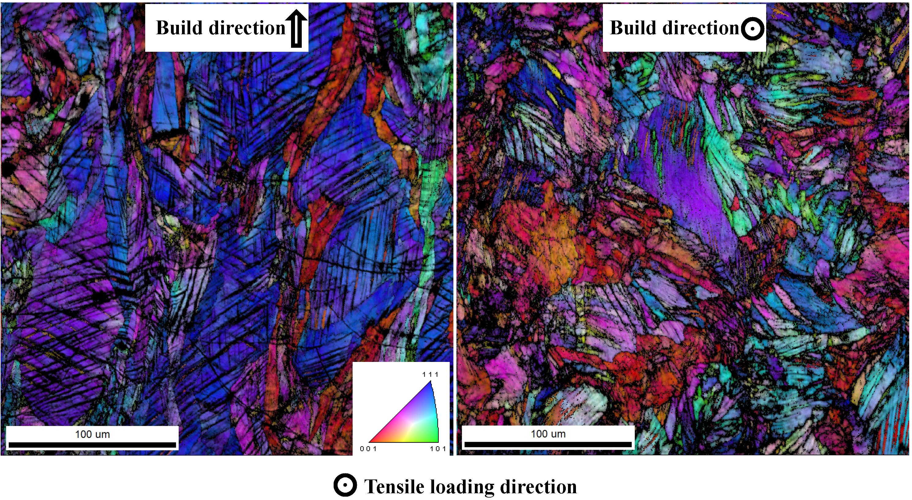 Microstructure of additively manufactured stainless steel